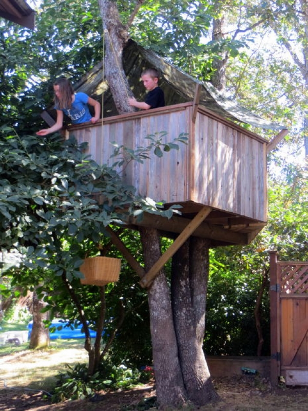Build a tree house creative child for Tree house blueprint maker