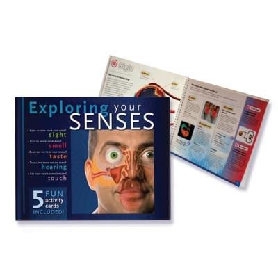 Exploring Your Senses Book