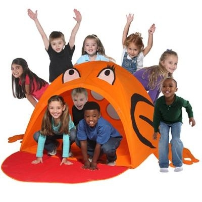 Tate The Toad Playstructure