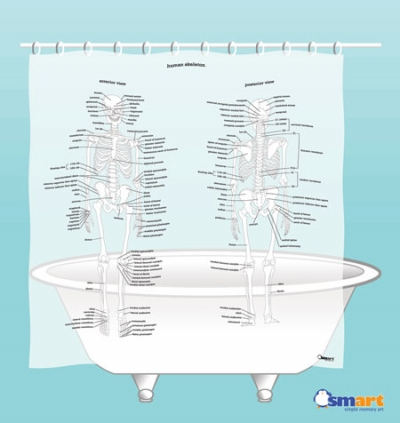 Human Skeleton Shower Curtain by SMART