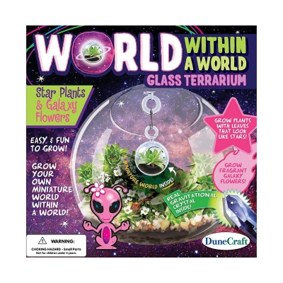 World Within A World Star Plants & Galaxy Flowers
