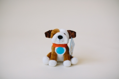 Mini Chewie the English Bulldog