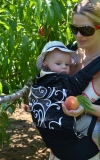 Reversible covers for ERGObaby Carriers