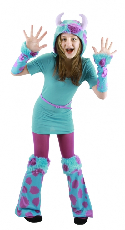 Sulley Accessory Kit