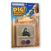 Dig! Discover & Display - Megalodon Shark Tooth