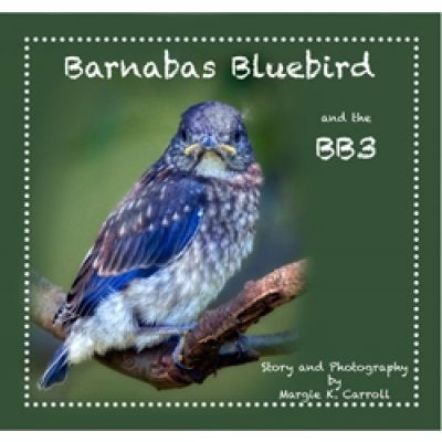 Barnabas Bluebird and the BB3