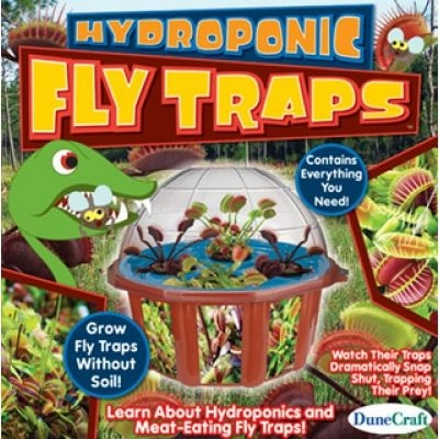 Hydroponic Fly Traps