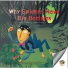 Why Spiders Have Big Bottoms by Storyteller and Children's Author Dr. Mike Lockett
