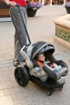 Infant Cruizer
