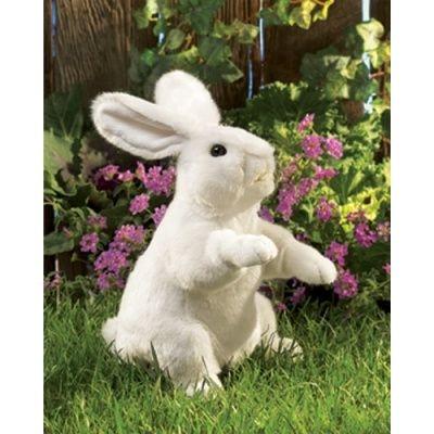 Standing White Rabbit