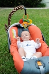 BabyGiraffe Holder