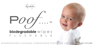 poof....biodegradable flushable wipes