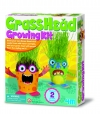 Grass Head Growing Kit