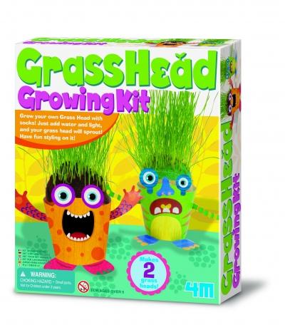 Grass Head Growing Kit