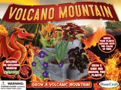 Volcano Mountain Garden