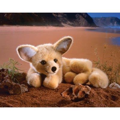 Kosen-Desert Fox
