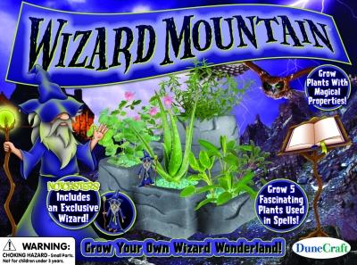Wizard Mountain
